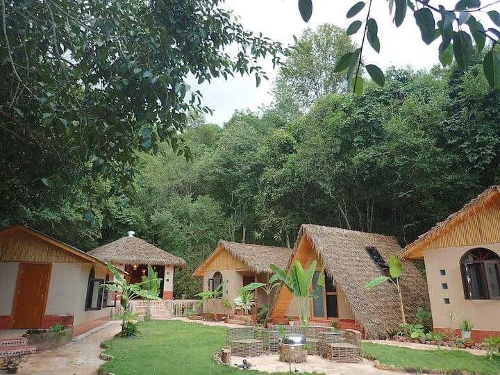 森林茅草小屋
