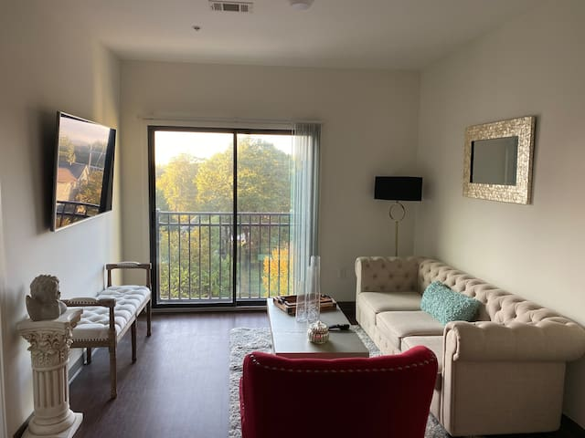 Executive Style 1 Bedroom Apartment Home