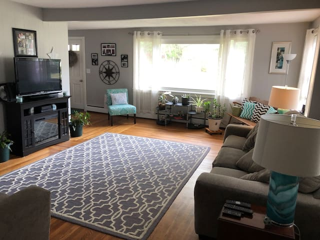 Comfy room in great location with an adorable dog