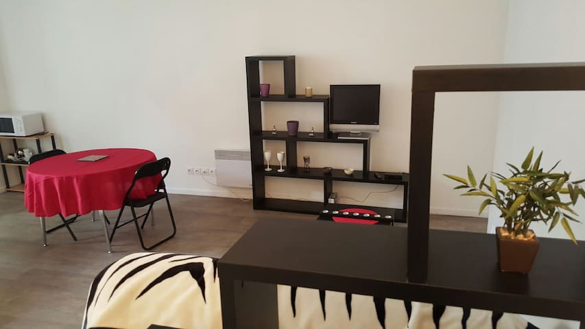 Appartement T1 - centre ville - Vienne - Apartment