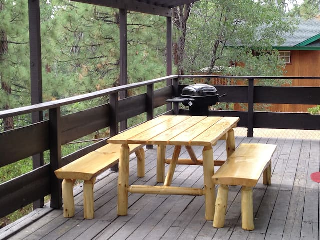 Back deck bbq and table overlooking spa area.