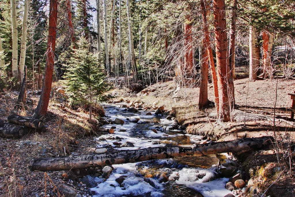 The bubbling year-round Little Cochetopa Creek runs through the premises just 50 feet from the house