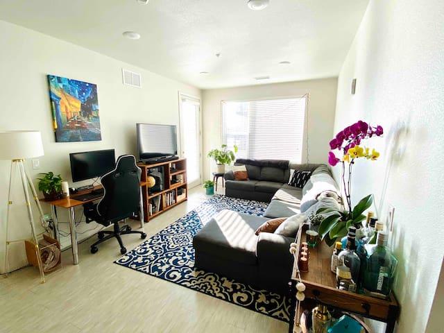 Clean comfort in Fort Collins