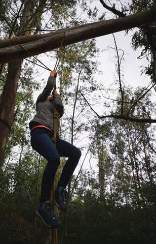 Tenemos zona de actividades en nuestra Reserva el Bosque, para que pongas a prueba tus nervios!!!