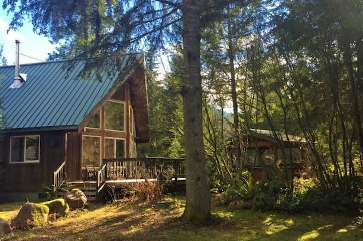 NEW! Stunning remodeled mountain chalet w/ hot tub for 8 +pets near Stevens Pass