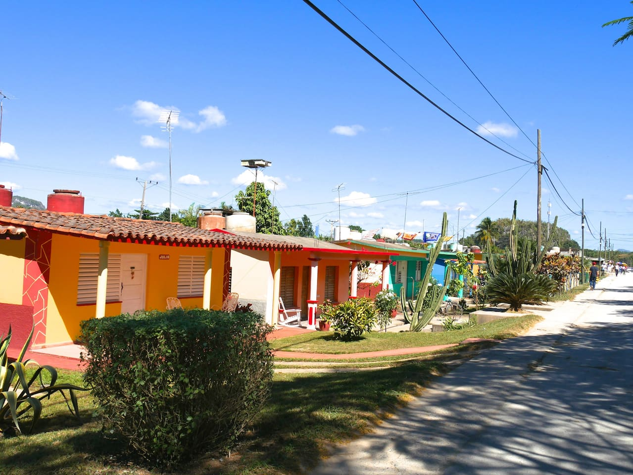 """OUr house is the green one with the cactus in front called """"Casa El Cactus"""""""