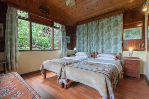 Holumba Haven : Tree tops cottage Room No 2