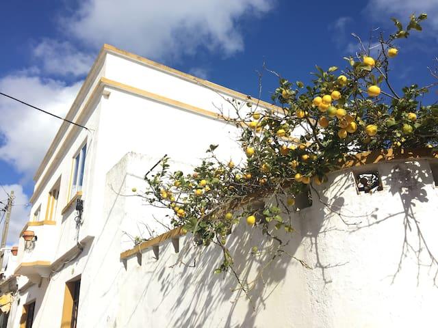 Haus in Raposeira, Sagres, Terrasse