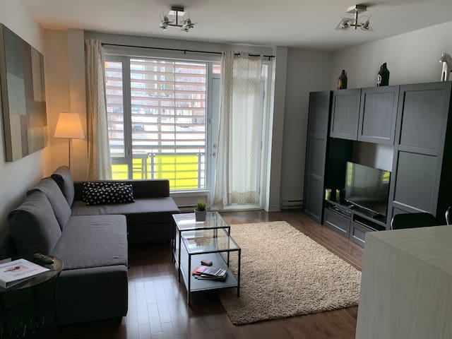 PLATEAU - close to Rosemont & Laurier stations !