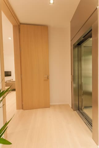 Apartment private floor access directly from the lift