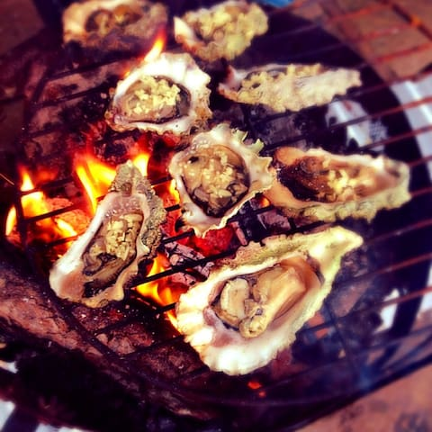 Grab a fishing license and cook oysters straight off the beach