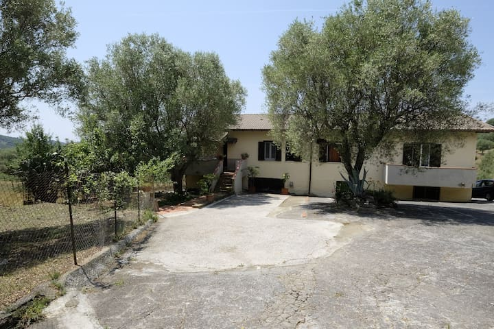 villa immersa nel verde degli ulivi cilentani - San Nicola - Daire