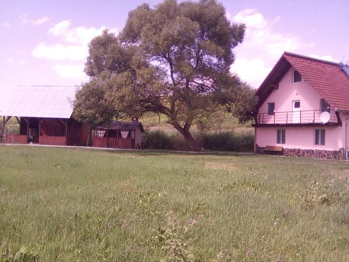 Casa de vacanta  Sighișoara ,,o oază de liniște'