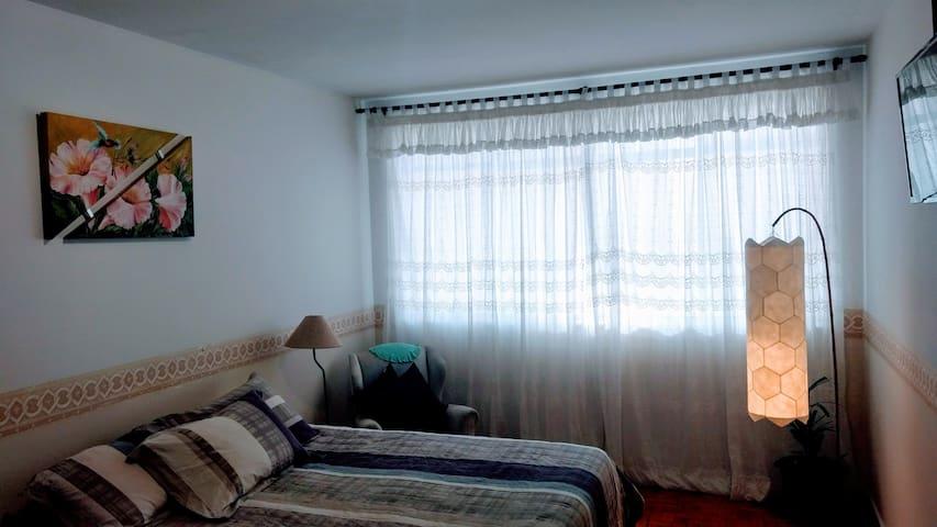 Ampla cama macia com travesseiro dê penas de ganso