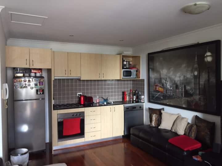 Stylish 1 bedroom Apartment - 10 mins from Sydney