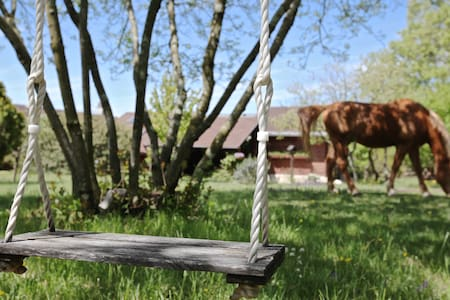 RANCH (with 3 horses) 20 min. from Trieste (NEW) - Štorje - Sommerhus/hytte