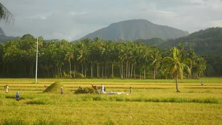 Stay in a farm home near airport - Butuan City - Yatakhane