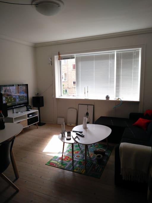 Sharaed living room
