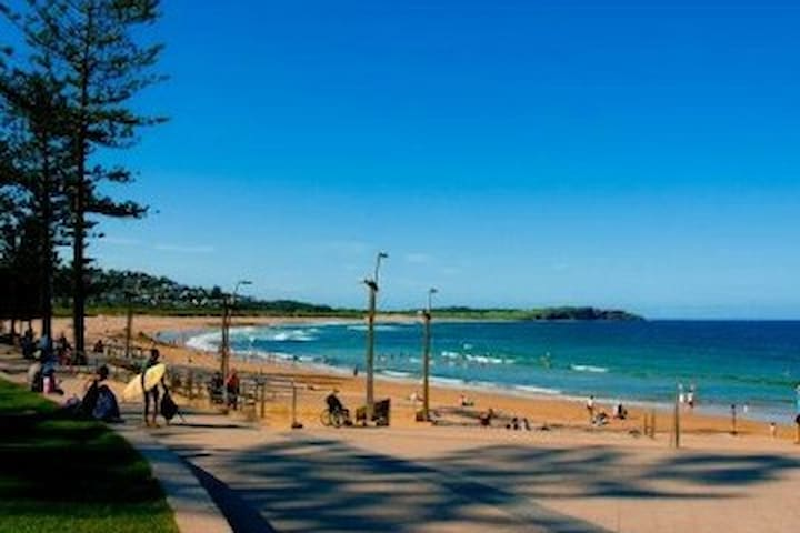 Beautiful home in Northern Beaches