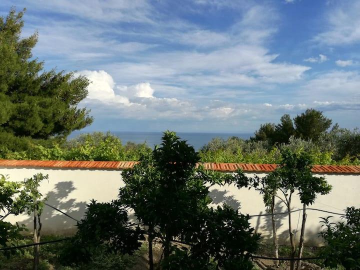 Villetta a 800 metri dal mare.