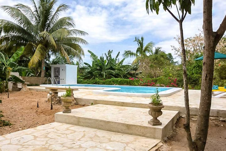 Luxury Villa with Pool in Old Havana