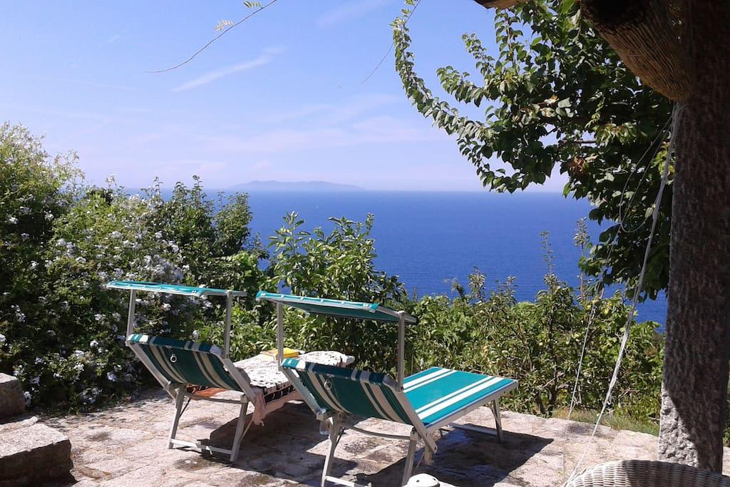 Appartamenti In Affitto In Corsica Sul Mare