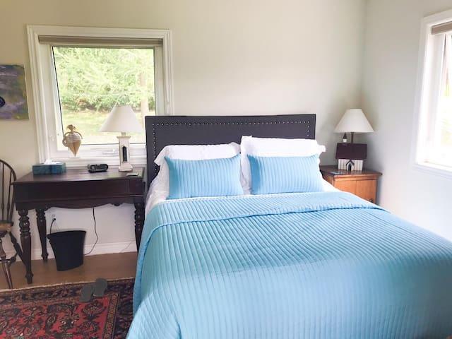 Studio apt bedroom with queen bed