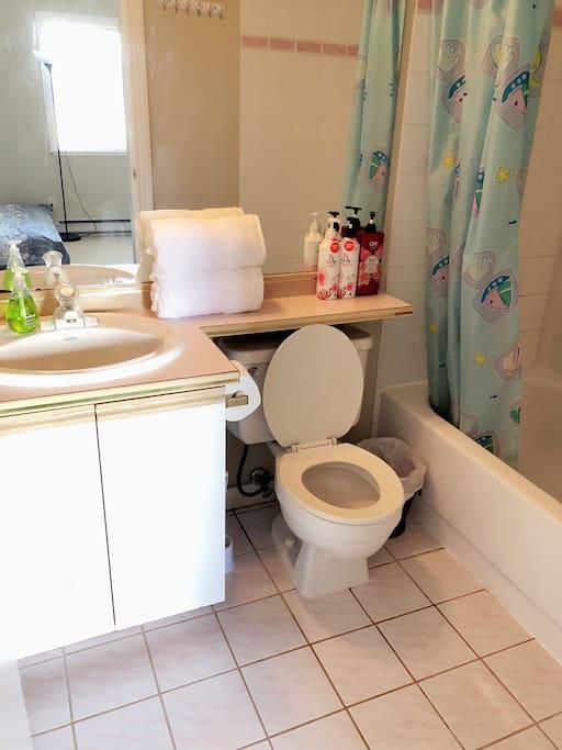 Privet bathroom inside the guest room