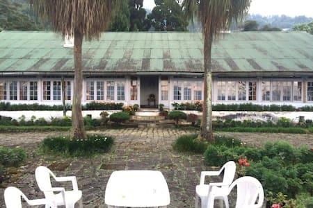 Singell Tea Estate   Bungalow   - Singel Tea Garden - Бунгало