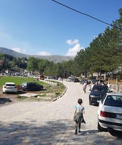 Vila Alpini