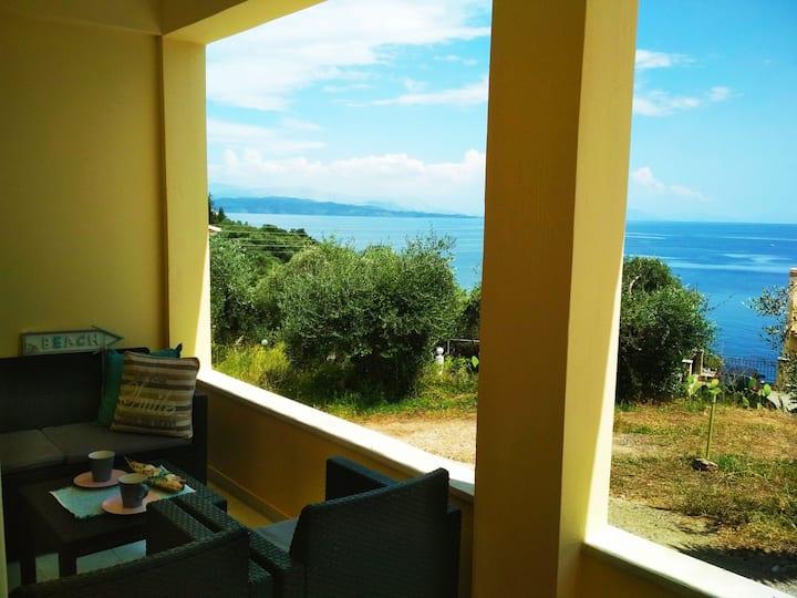 Seashell Glyfa Barbati Klara's apartment