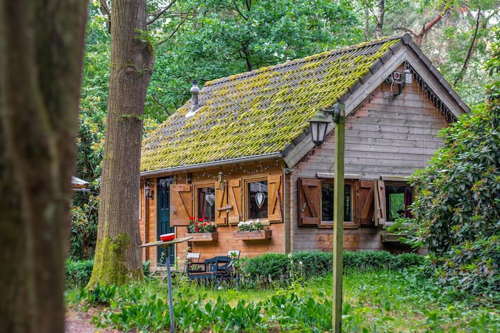 The Gingerbread Huis, nestled in private woods
