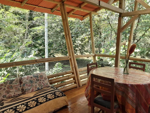 Mashpi Tropical Forest Reserve Birdwatching Cabin
