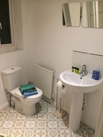 Ensuite with  shower  in master bedroom