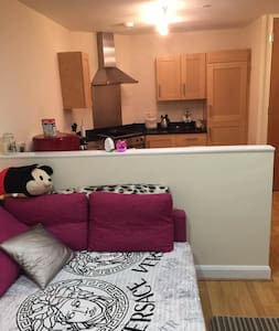 Lovely room in city centre,LE1 - Leicester - Wohnung