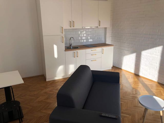 One bedroom apartment right in the city center