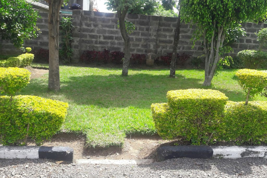 Manicured garden for relaxing