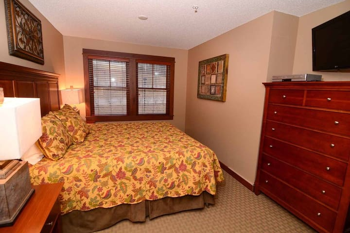 A218- One bedroom suite w/ standard view, gas fireplace & free WiFi!