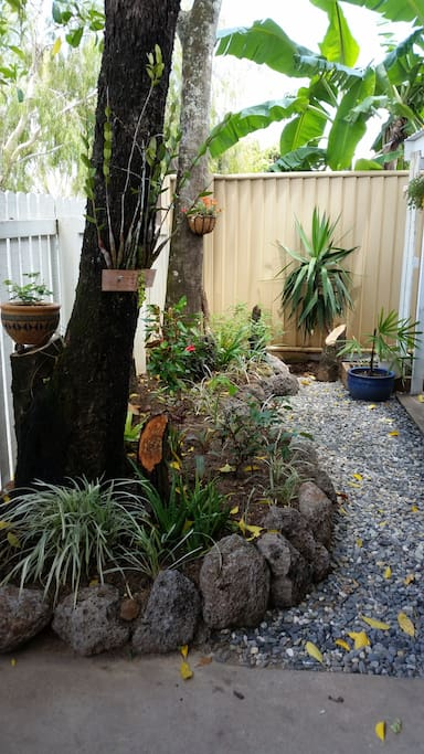 小花园 Small garden