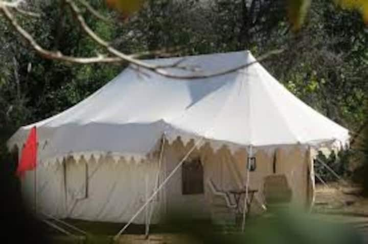 Pushkar Camps and Room stay (Near Adventure park)