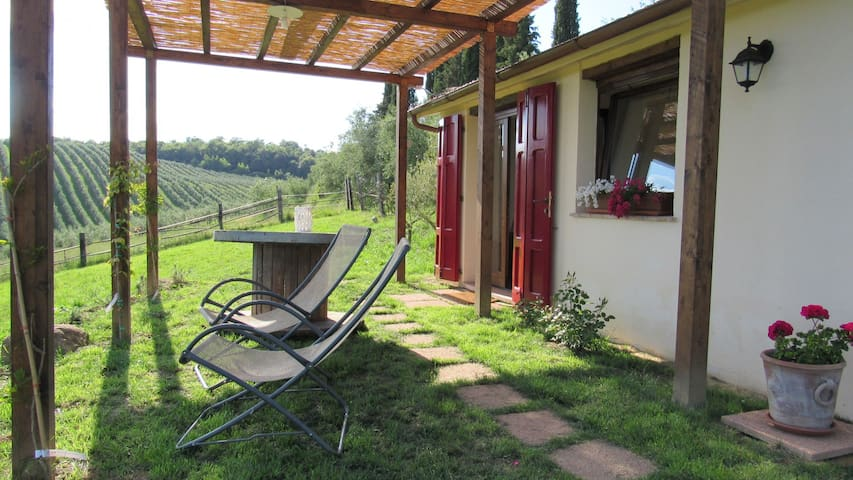 Cottage Belvedere in Val D'Orcia - Trequanda - Appartement