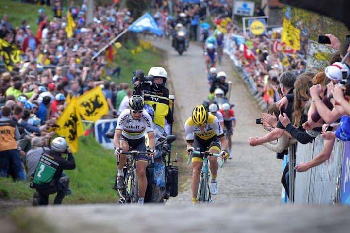 Ronde van Vlaanderen (Taaienberg 2 km) (Copyright Nieuwsblad)