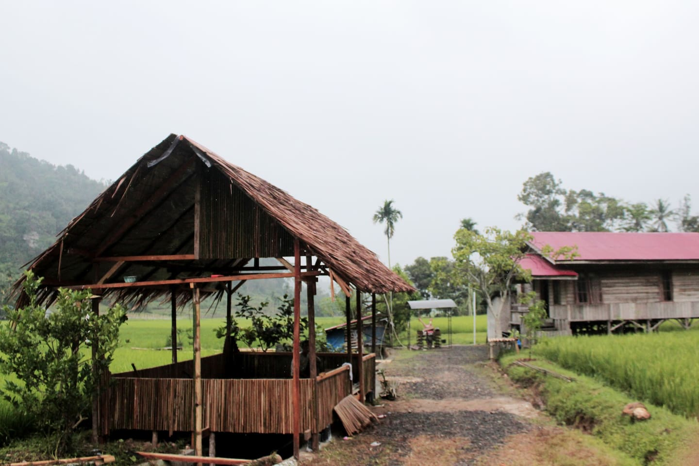 The new exotic place to stay in Harau Valley, West Sumatra.