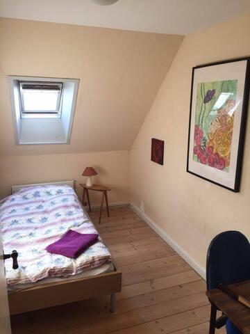 Hyggeligt værelse tæt på alt Rum 1 - Odense - Appartement
