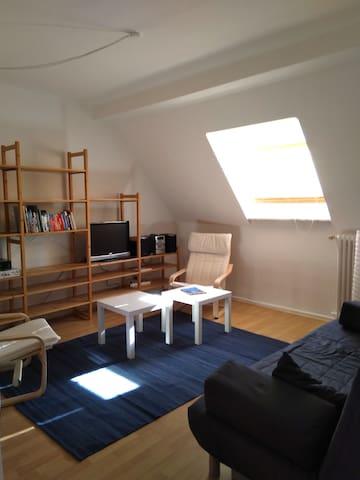 Helle und ruhige 55qm DG-Wohnung
