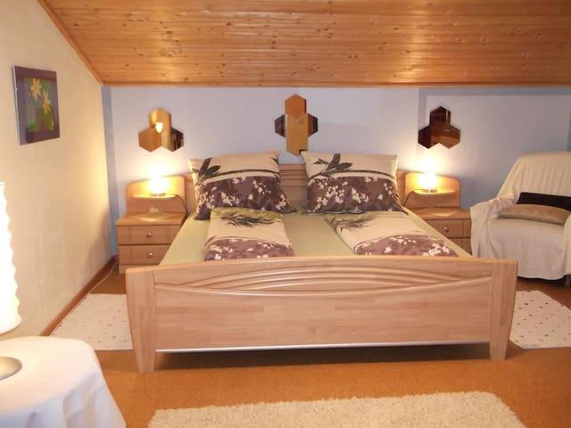 Big cozy apartment - Götzens - Apartment