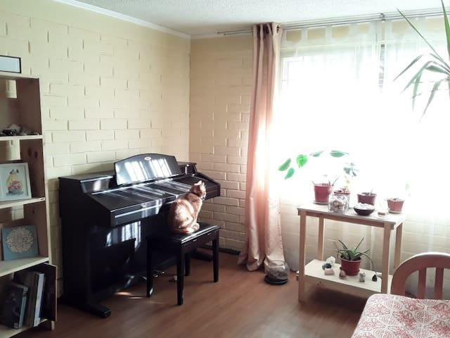 Acogedora habitación en Providencia