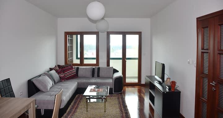 D Apartment Zabljak 1