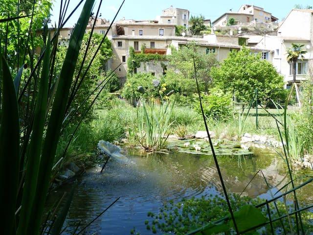 Gite nature les ANOURES en PROVENCE - Mollans-sur-Ouvèze - Nature lodge