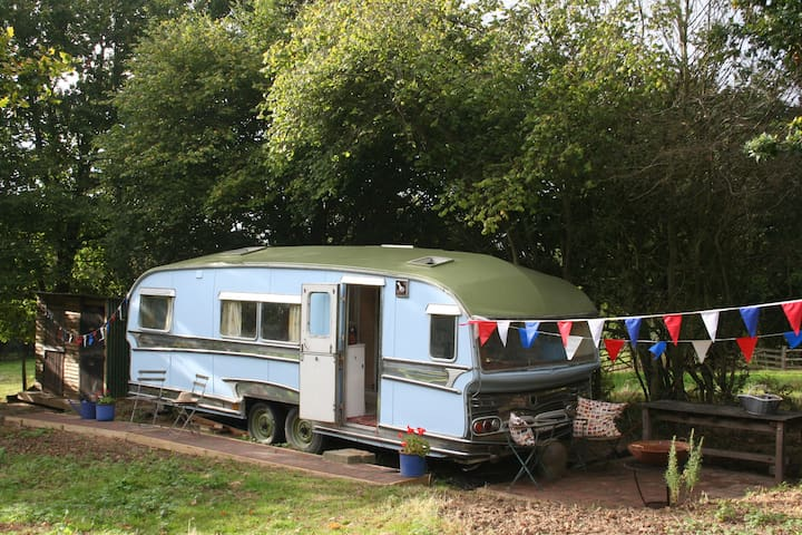Gypsy Caravan Glamping in East Sussex - East Sussex - Camping-car/caravane